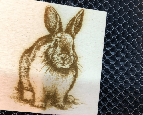 graveren konijn
